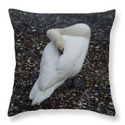 Swan1 Throw Pillow