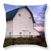 Swaner Dawn Throw Pillow
