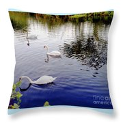 Swan's 3 In A Group. Throw Pillow