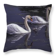 Swans And Signet Throw Pillow
