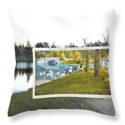 Swans At Roger Williams Park In Providence Rhode Island Throw Pillow