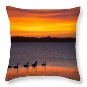 Swans In The Sunrise Throw Pillow