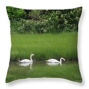 Swans Of Chatham Throw Pillow