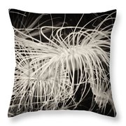 Swaying Anemone Bw Throw Pillow