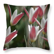 Swaying To The Music Throw Pillow