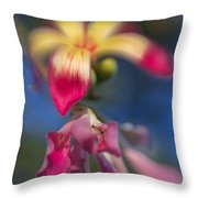 Sweet And Sour Throw Pillow