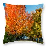 Sweet Autumn Throw Pillow