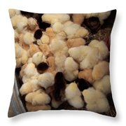 Sweet Baby Chicks For Sale Throw Pillow