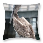 Sweet Brown Pelican - Digital Painting Throw Pillow