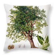 Sweet Chestnut Throw Pillow by Johann Kautsky