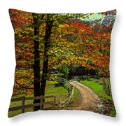 Sweet Country Morning Throw Pillow