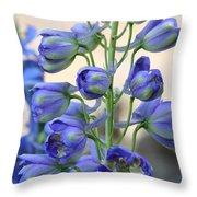 Sweet Delphinium Throw Pillow