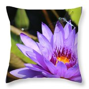 Sweet Dragonfly On Purple Water Lily Throw Pillow