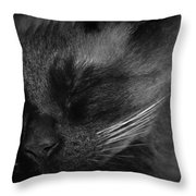 Sweet Dreams In Black And White Throw Pillow
