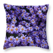 Sweet Dreams Of Purple Daisies Throw Pillow
