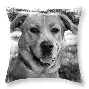 Sweet Hound Throw Pillow