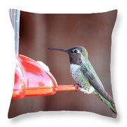 Sweet Little Hummingbird On Feeder Throw Pillow