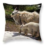 Sweet Mama Goat Throw Pillow