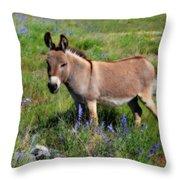 Sweet Miniature Donkey Throw Pillow
