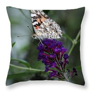Sweet Nectar Throw Pillow