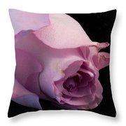 Sweet Onament -the Rose Throw Pillow
