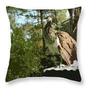 Sweet Pea On The Hen House Roof Throw Pillow