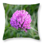 Sweet Pink Clover Throw Pillow