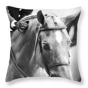 Sweet Pony Throw Pillow