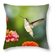 Sweet Promise Hummingbird Throw Pillow