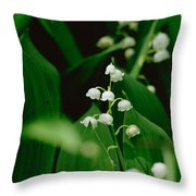 Sweet Scented Throw Pillow