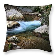 Sweet Spot Throw Pillow