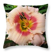 Sweet Sugar Candy Daylily Throw Pillow