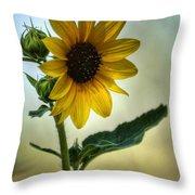 Sweet Summer Sunflower Throw Pillow