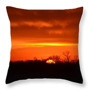 Sweet Tangerine Throw Pillow