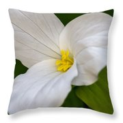 Sweet White Trillium 5 Throw Pillow