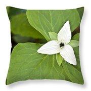 Sweet White Trillium Throw Pillow