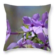 Sweet William Purple Wildflower Springtime Throw Pillow
