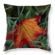 Sweetgum Leaf Throw Pillow
