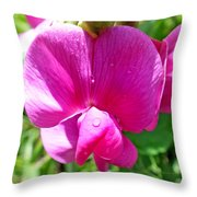 Sweetpea Flower Upclose Throw Pillow