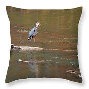 Sweetwater Creek Heron Throw Pillow