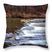 Sweetwater Creek Throw Pillow