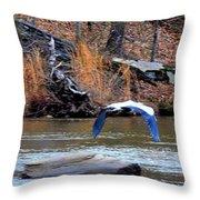 Sweetwater Heron In Flight Throw Pillow