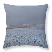 Swept Away #2 Throw Pillow