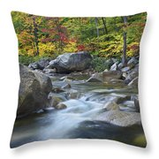 Swift River In Fall White Mountains New Throw Pillow
