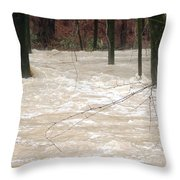 Swift Waters Throw Pillow