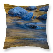 Swiftriver Reflections Throw Pillow