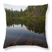 Swim Lake Throw Pillow