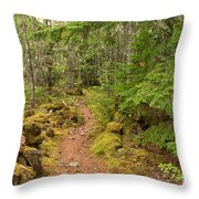 Swim Lake Trail Throw Pillow
