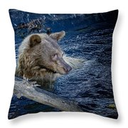 Black Bear On Blue Throw Pillow