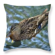 Swimming Duck  Throw Pillow